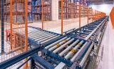 Hohe Leistung und automatische Handhabung der Ware mit Palettenfördersystemen