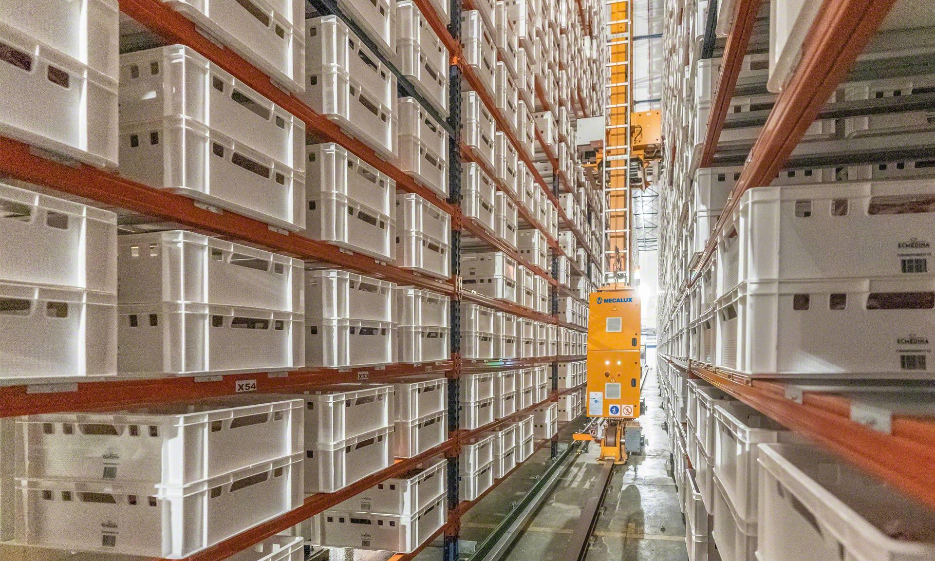 Elaborados Cárnicos Medina: 30 Mio. kg Rindfleisch/Jahr in einem automatisierten Puffer
